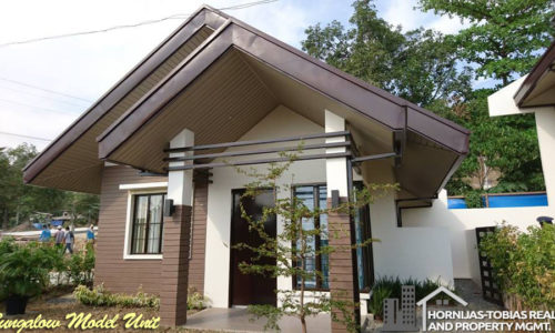 bungalow narra park residences, tigatto, davao city. mid-cost housing project of nurtura land