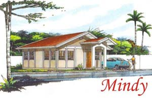 This affordable house for sale in Davao has 2 bedrooms and 1 toilet and bath. Can be thru pag-ibig financing.