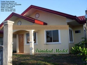 Trinidad is a beautifully designed Davao house for sale and for construction. Can be through Pag-ibig housing.