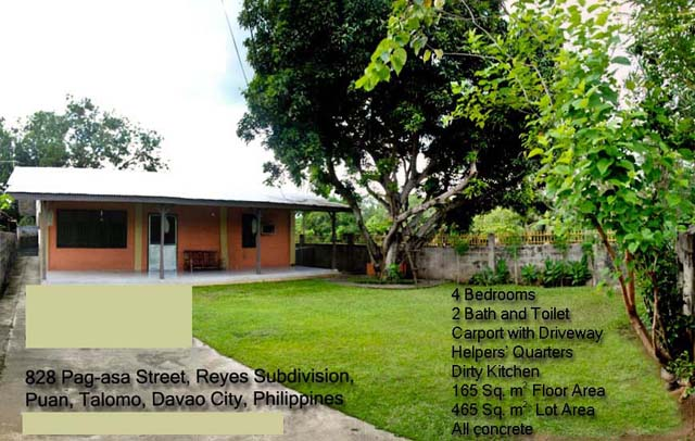 House for Sale in Puan, Talomo, Davao City