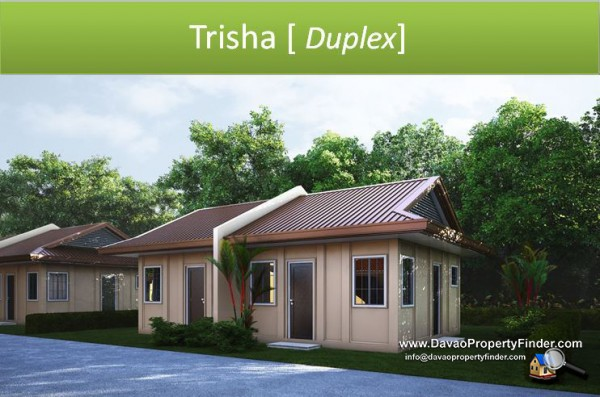 Trisha House At Greenwoods Davao Davao Property Finder
