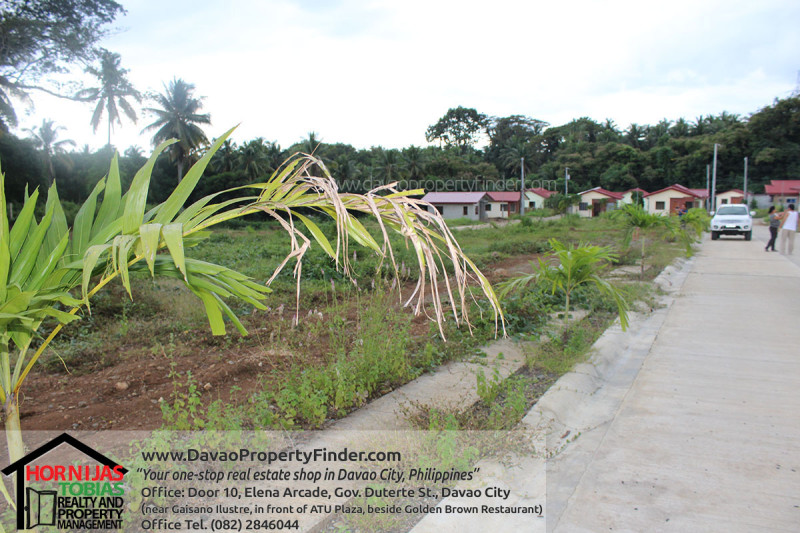 road-elenita-heights-park-villas-catalunan-grande-davao-city