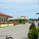 Main road of the subdivision