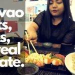 Vlog 3: Davao Eats, Cats, UIC, and Real Estate